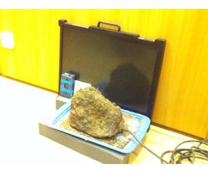 Camera_Stone